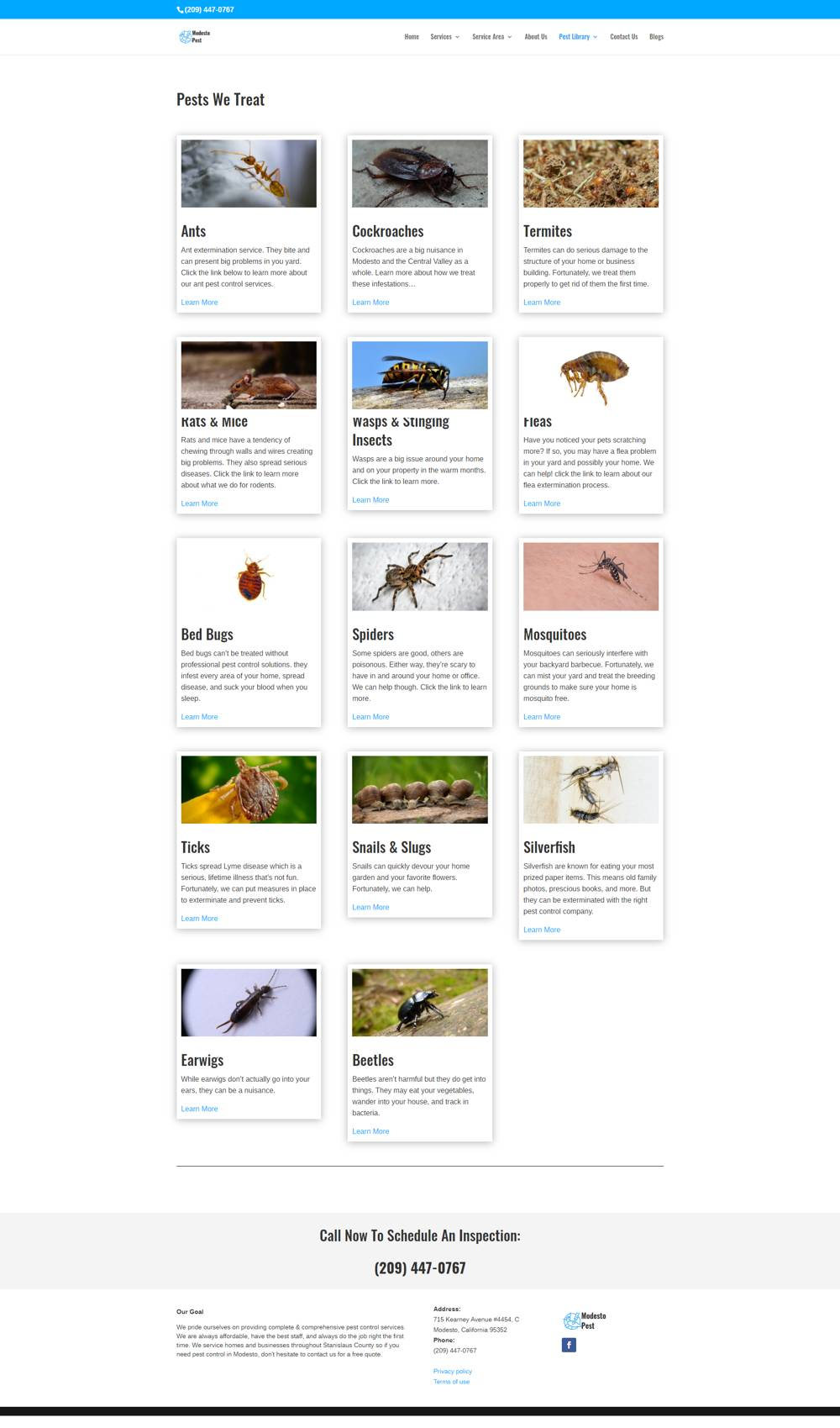 pest library image